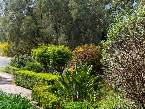 9 Heather Court Paradise, SA 5075
