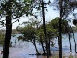 16 The Esplanade Karragarra Island, QLD 4184