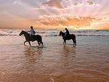 4 Fantail Rise Diamond Beach, NSW 2430