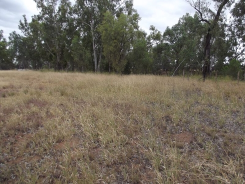 Lot 20 Melrose Drive Clermont, QLD 4721