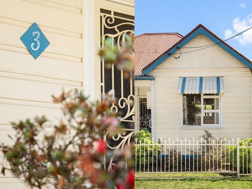 3 Wellbank Street Concord, NSW 2137
