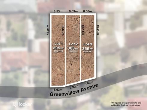 5 Greenwillow Avenue Paradise, SA 5075