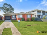 38 Curtis Road Chester Hill, NSW 2162