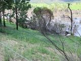 1222 Bulldog Road Bulldog, NSW 2469