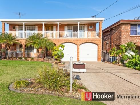 12 Cameron Court Merrylands, NSW 2160