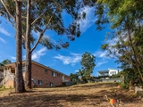 19 Riverview Crescent Catalina, NSW 2536