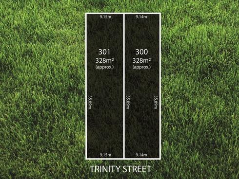 Lot 300/ Trinity Street Ottoway, SA 5013