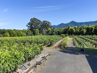 308 Pine Creek Way Bonville , NSW, 2450