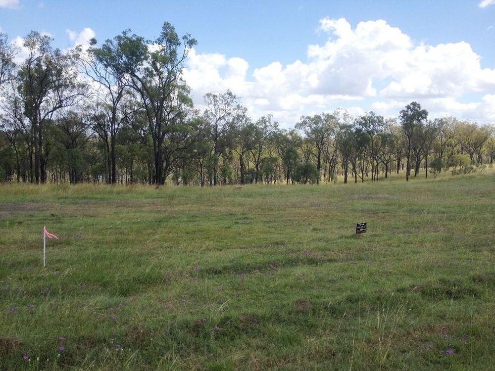 12 Boondooma Dam Lookout Road Okeden, QLD 4613