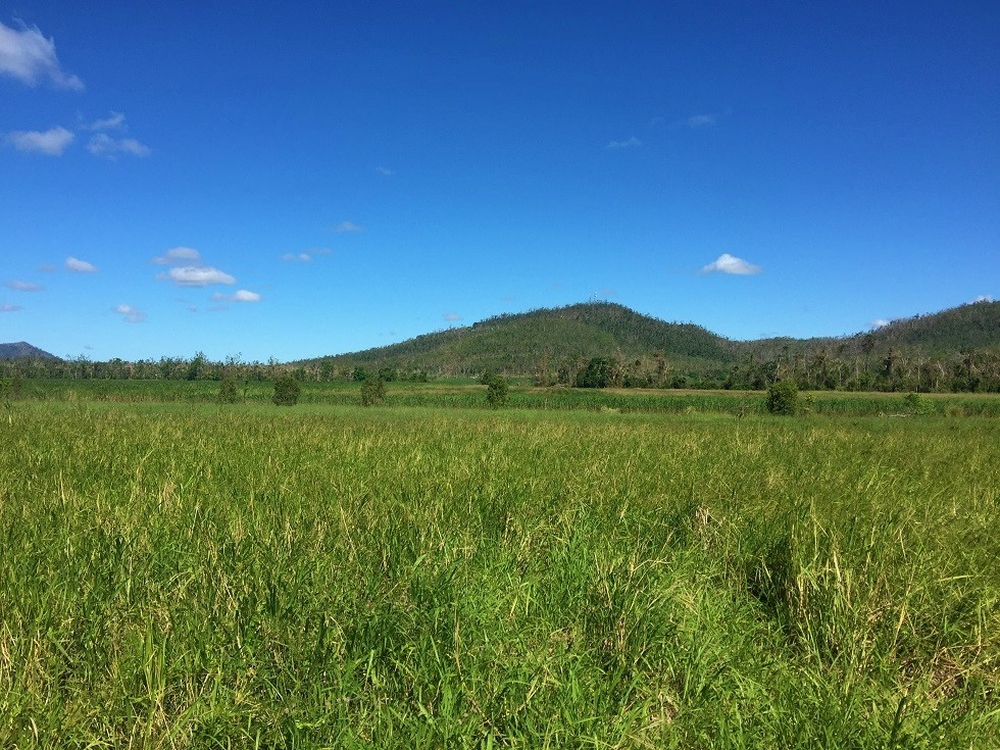 Lot 10 Gregory Cannon Valley Road Gregory River, QLD 4800